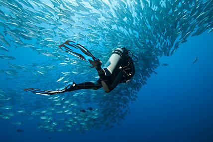 Certificação-dos-Mergulhadores-Recreativos
