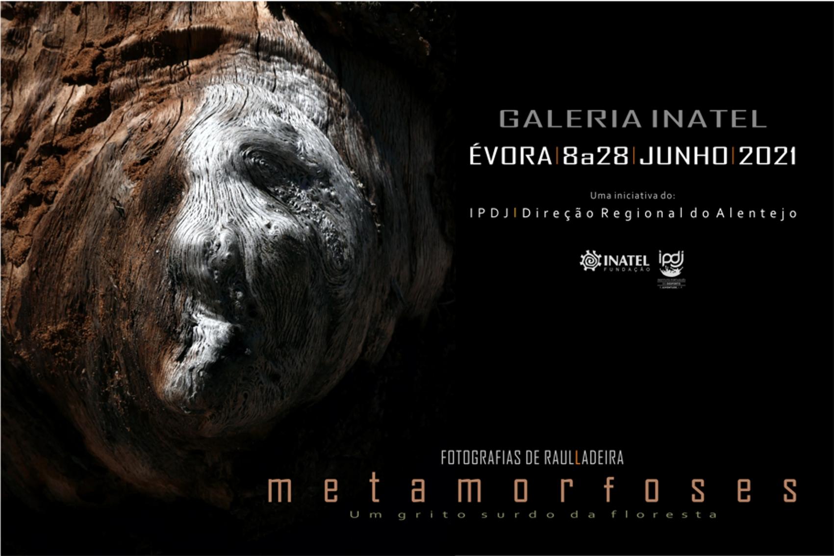 Cartaz da exposição metamorfoses
