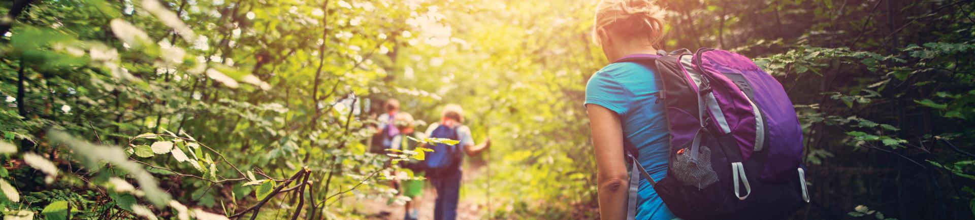 Fotografia de jovens de costas a fazer caminhada por um caminho na floresta