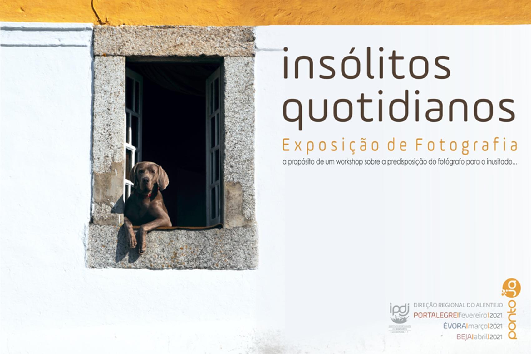 Cartaz sobre a exposição (cão à janela)
