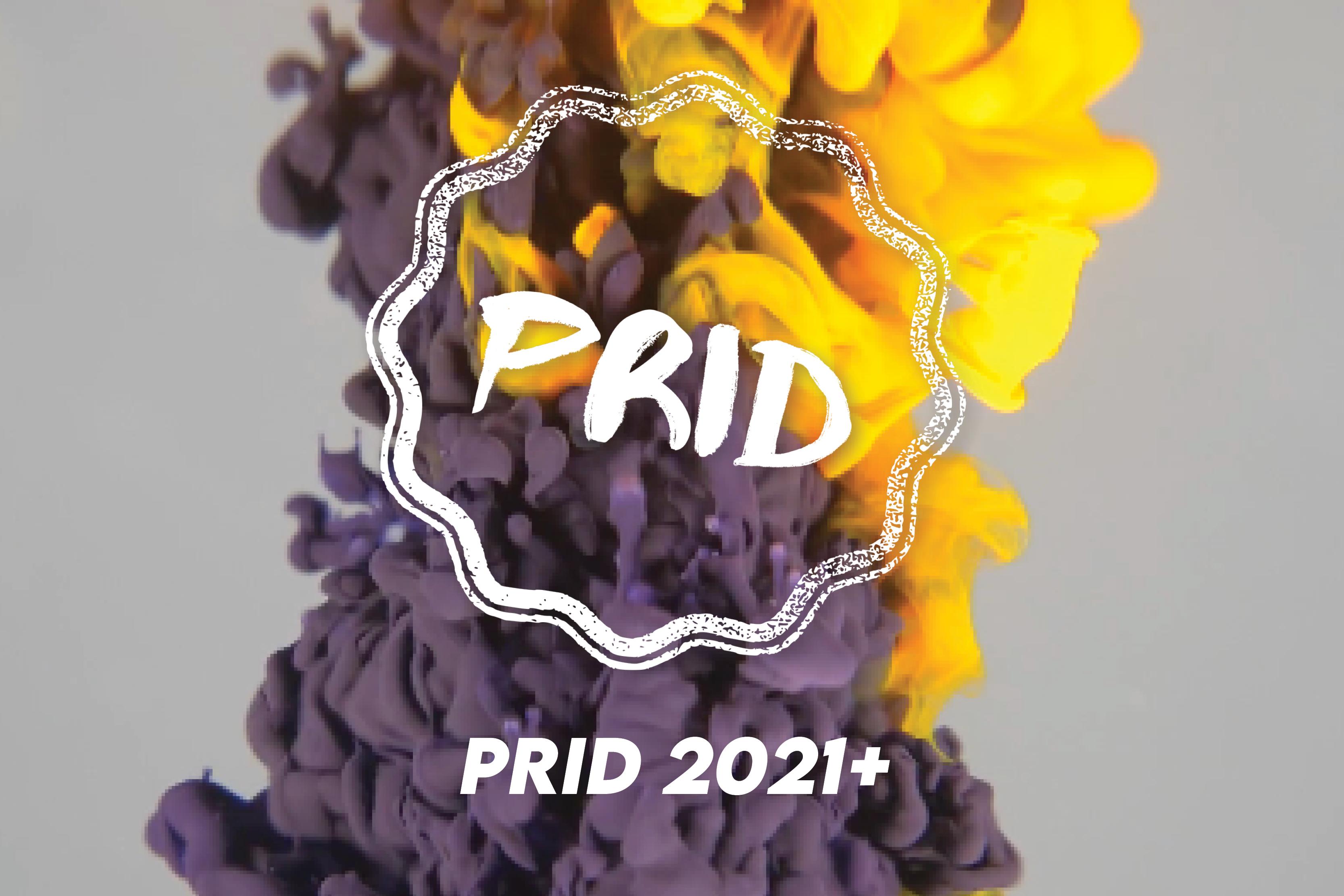imagem de tinta a difundir-se com a inscrição «PRID 2021 mais»